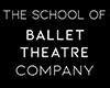 Ballet Theatre Company