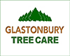 Glastonbury Tree Care